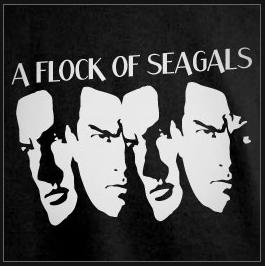flock_of_seagals2